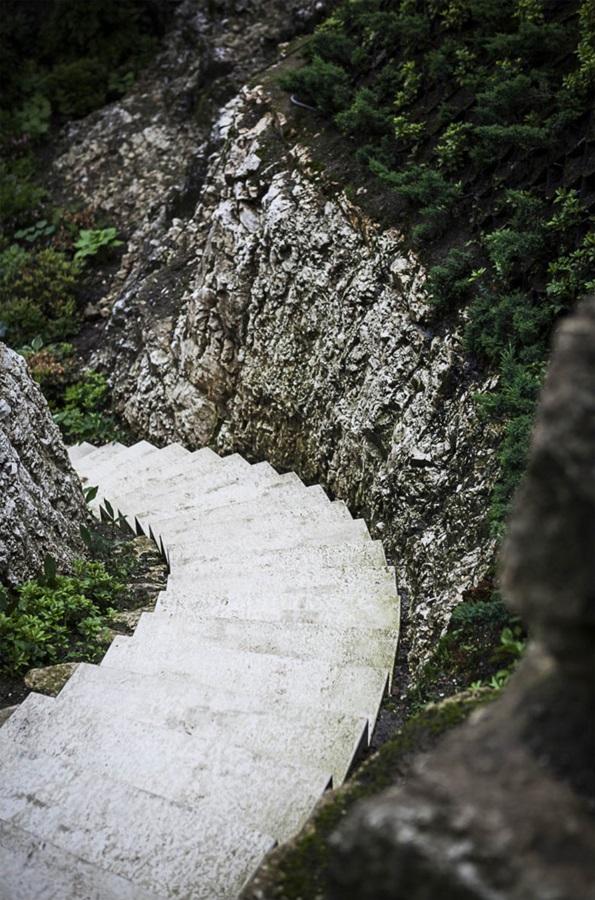 Zjawiskowy ogród – schody osadzone w skale