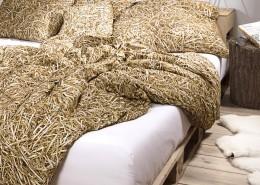 Styl eko w sypialni
