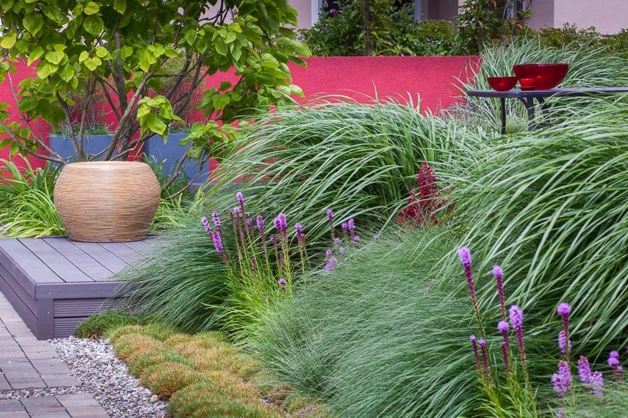 Trawy w nowoczesnym ogrodzie