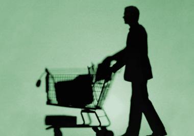 prosument konsument i profesjonalista