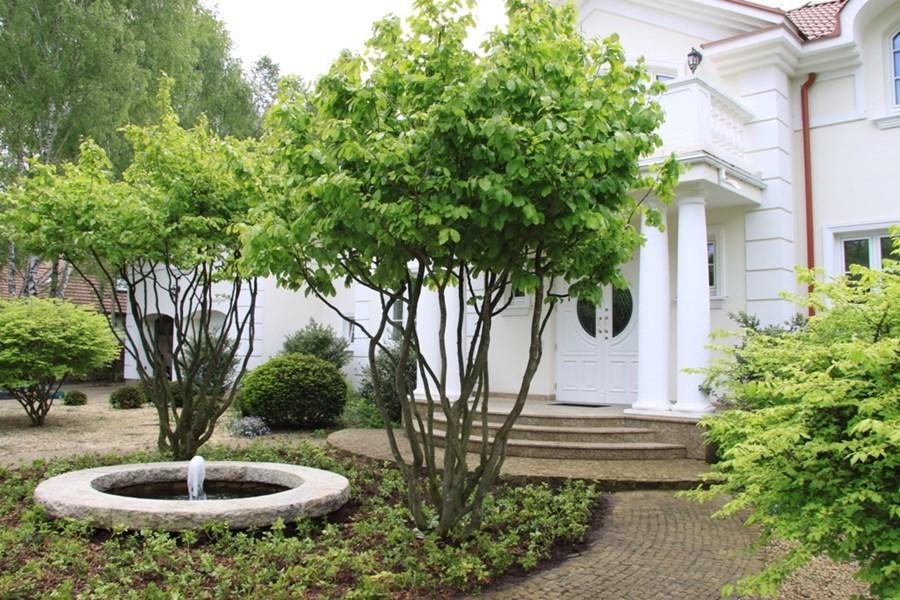Pomysł na ogród - fontanna ogrodowa