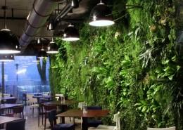 Zielona ściana we wnętrzu