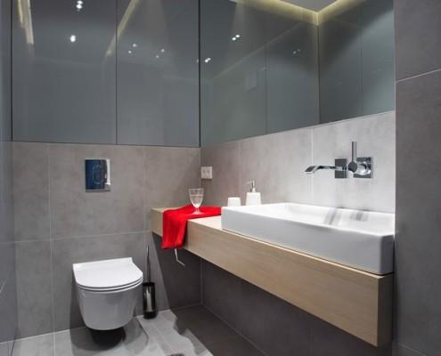 Nowoczesna toaleta w szarościach