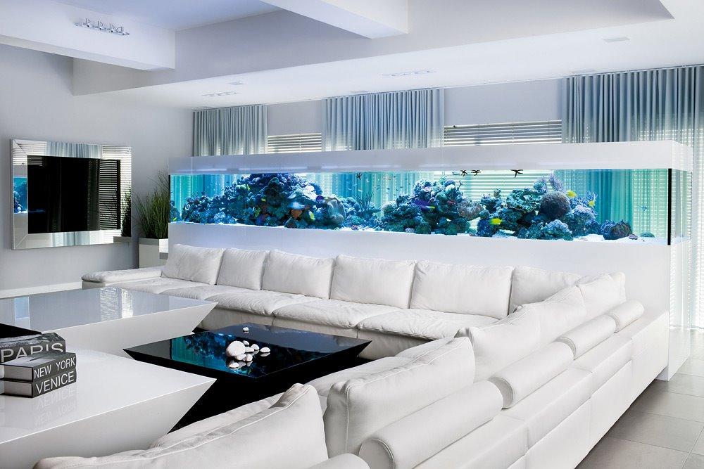Akwarium w cianie dekoracja na miar ekskluzywnych wn trz - Aquarium wohnzimmer ...