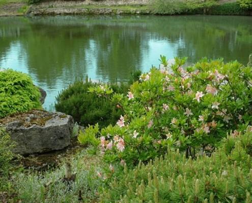 Wodny gród w naturalnej ekspozycji