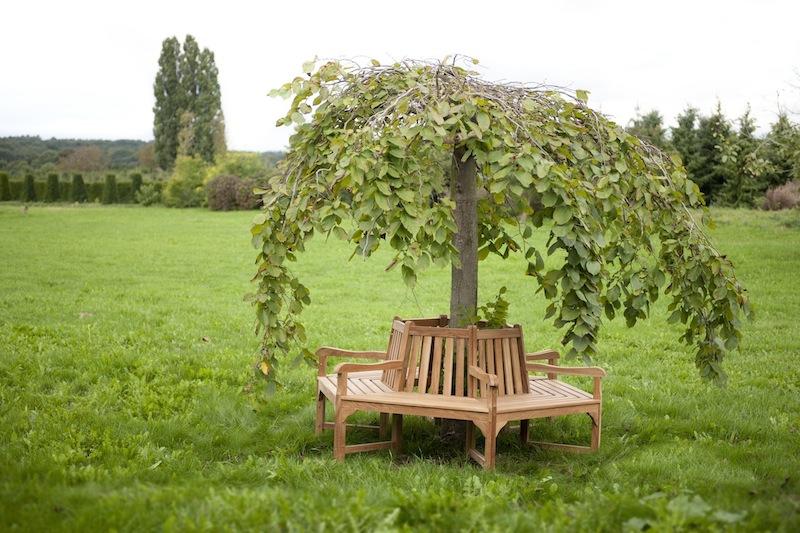 Okrągła ławka ogrodowa - drewniana ławka okalająca drzewo