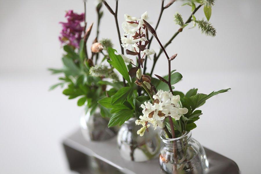 Wiosenne kwiaty - Kwiaty, wazony i donice wewnętrzne