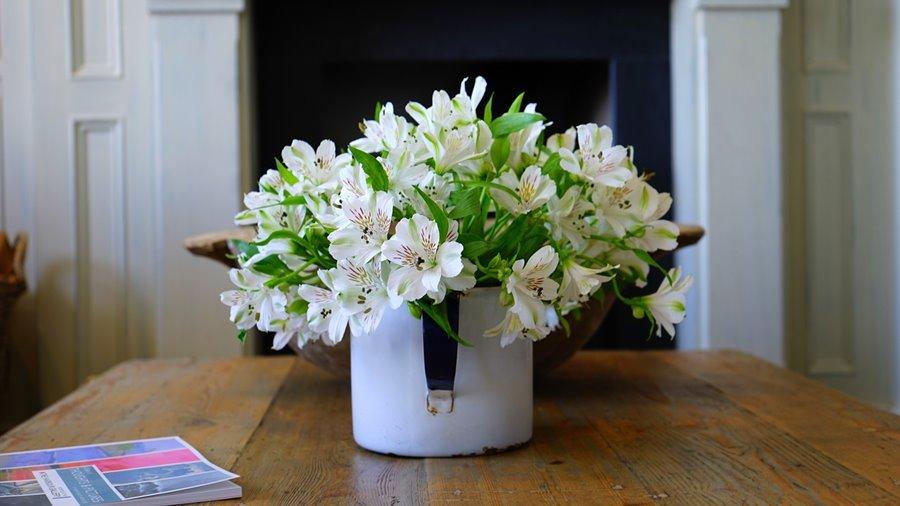 Kwiaty w domu - donice wewnętrzne i pozostałe dekoracje