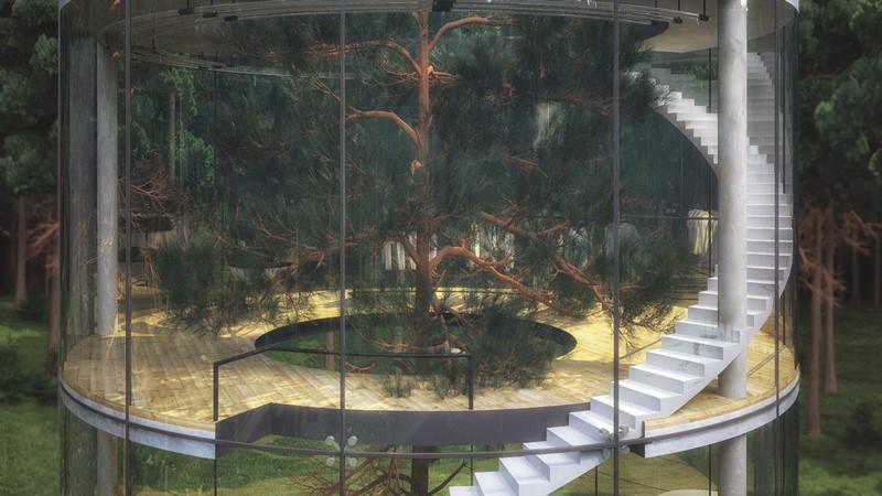 Drzewo w szklanym domu - Aibeka Almassova