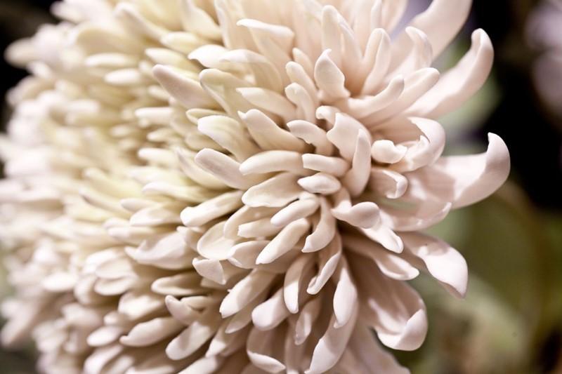 Sztuczne kwiaty porcelana Vladimir Kanevsky