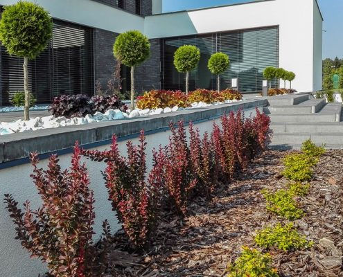 Aranżacja minimalistycznego ogrodu