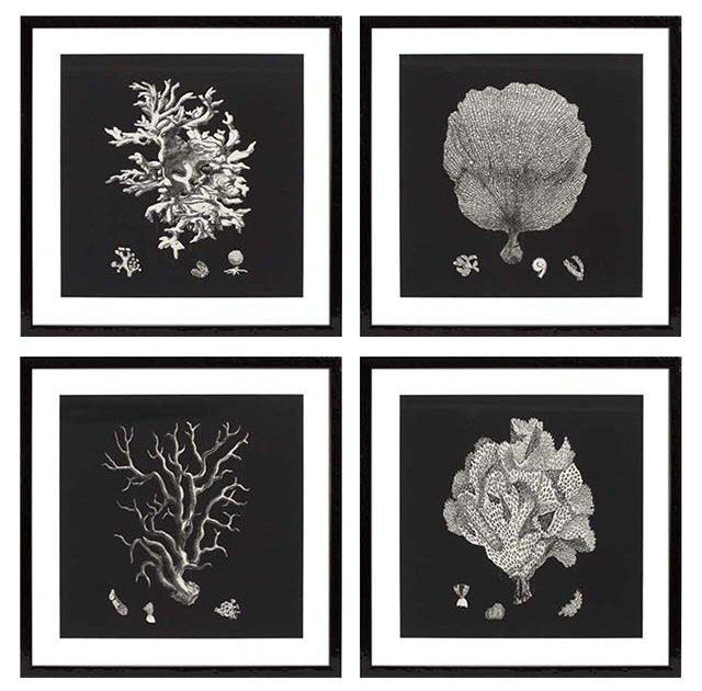 Koralowe dodatki - grafika