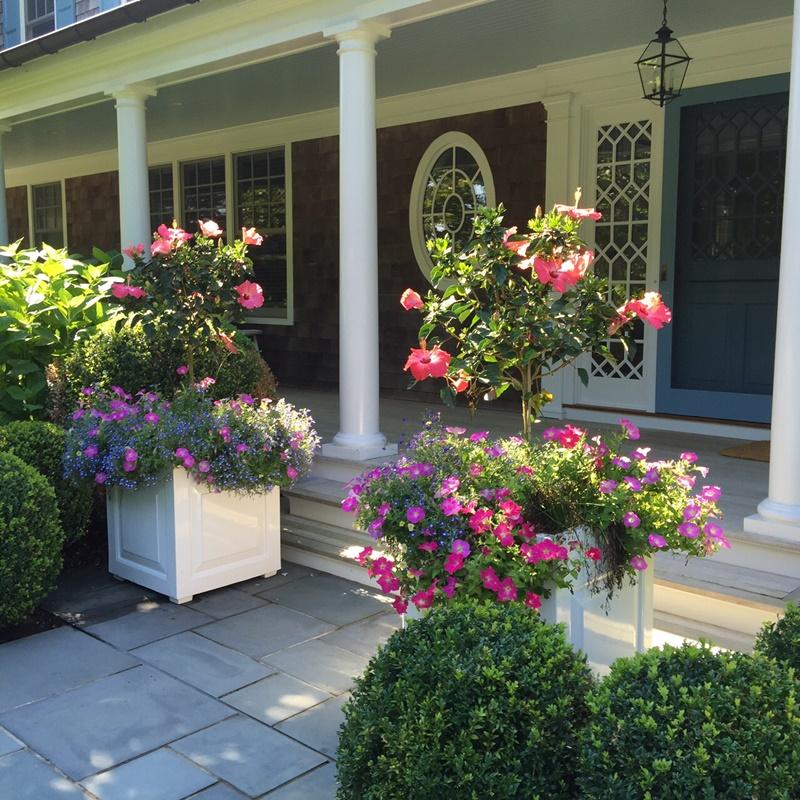 Kwieciste wejście do domu