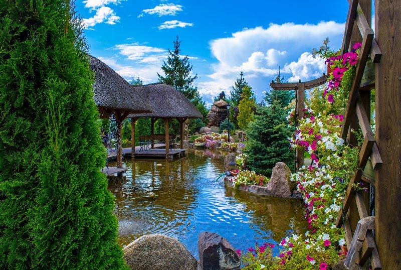 Aranżacja wodnego ogrodu