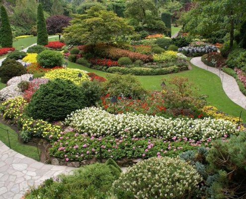 Duży kwiecisty ogród