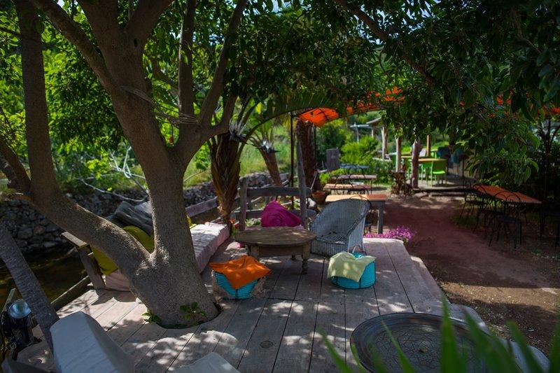Eklektyczny taras pod drzewem