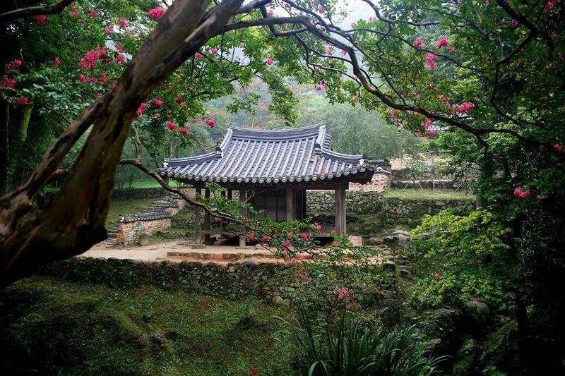 Ogród japoński świątynia