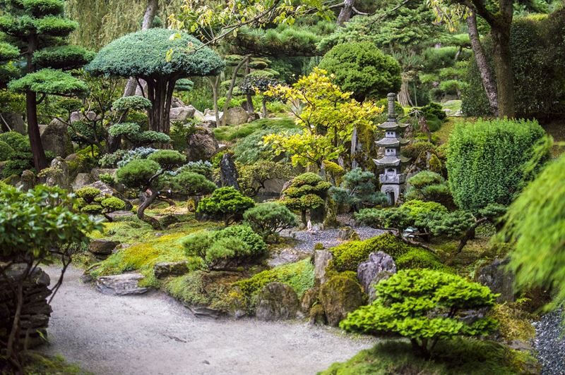 Japońskie ogrody bonsai