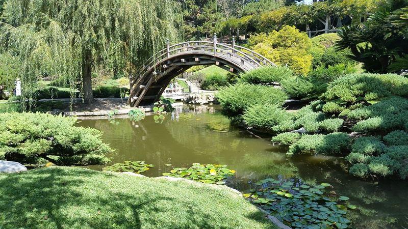 Ogród japoński most