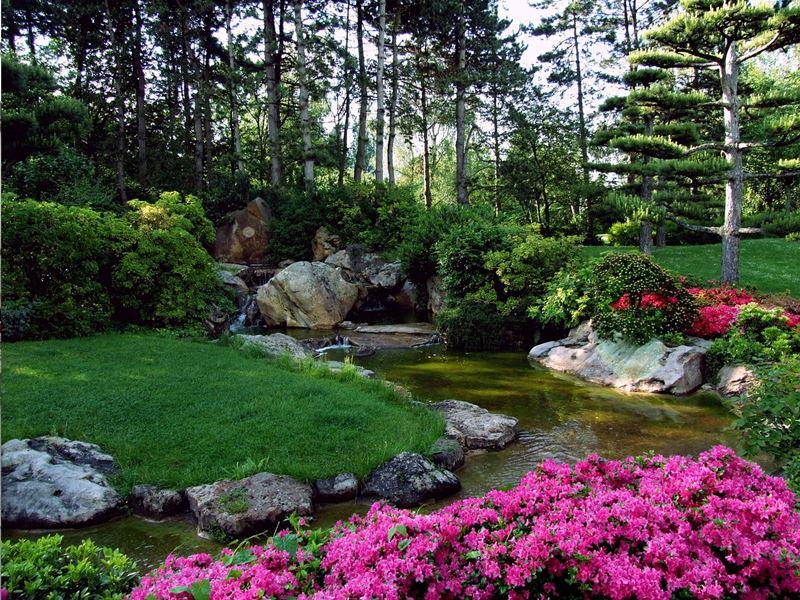 Ogród japoński strumyk