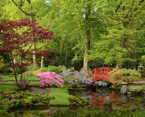 Ogród japoński w Hadze