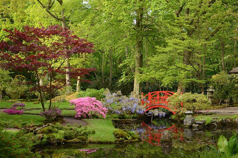 Ogród japoński w Hadze, autor Steven Lek