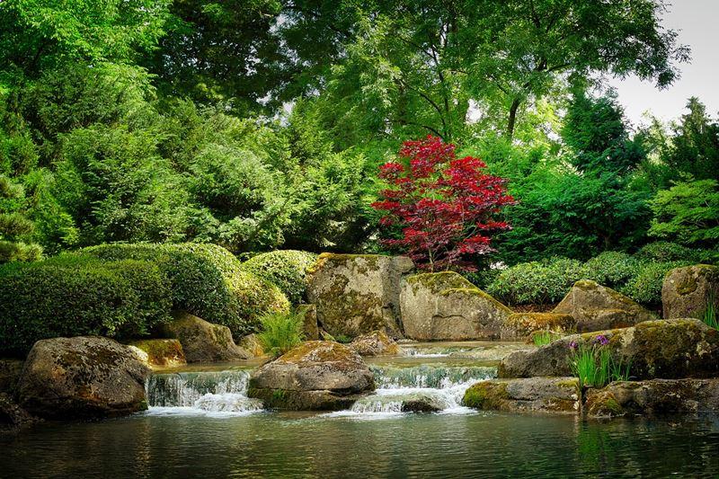 Ogród japoński wodospad