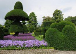 Roślinne rzeźby w ogrodzie