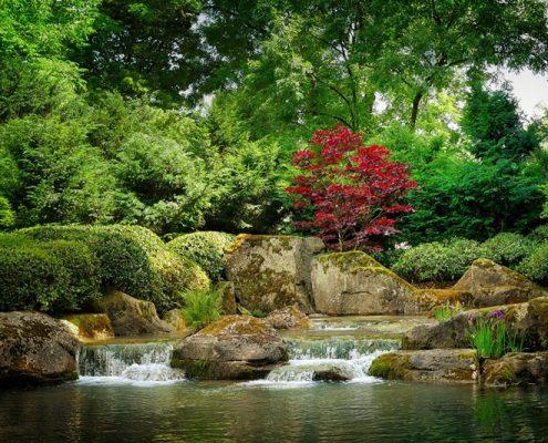 Skalna kaskada orientalnym ogrodzie