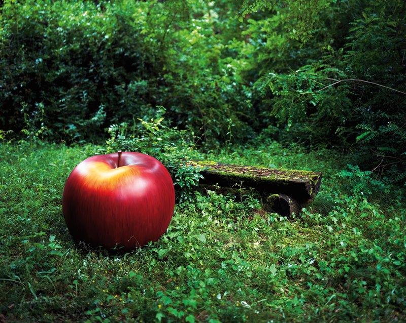 Ekskluzywna rzeźba zewnetrzna w ogrodzie