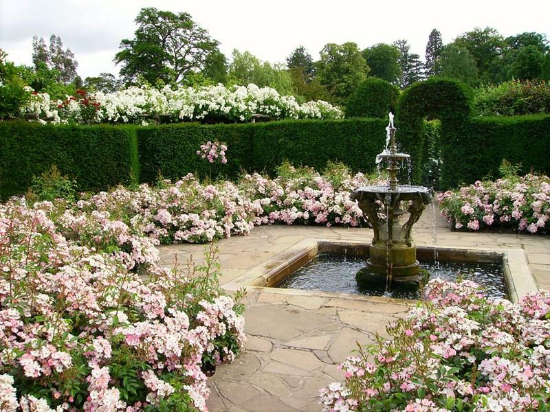 Klasyczna fontanna w ogrodzie
