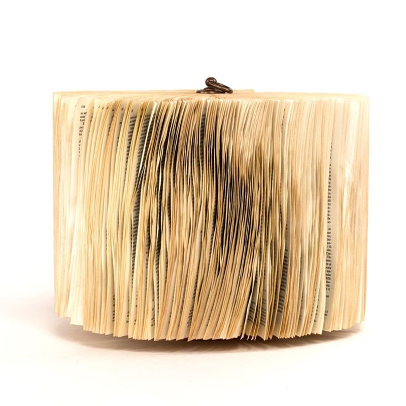Papierowa rzeźba książka Crizu Blown Colonna