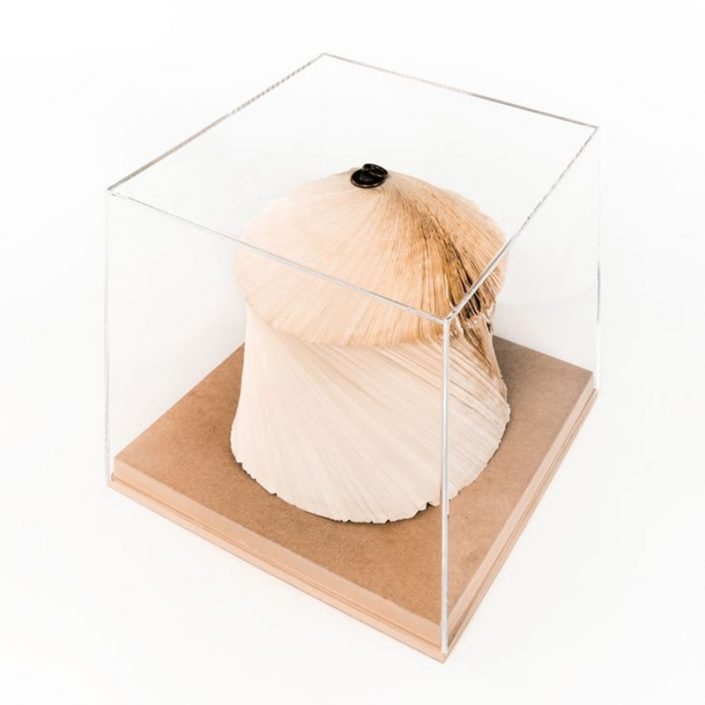 Papierowa rzeźba książka Crizu Blown Cupola