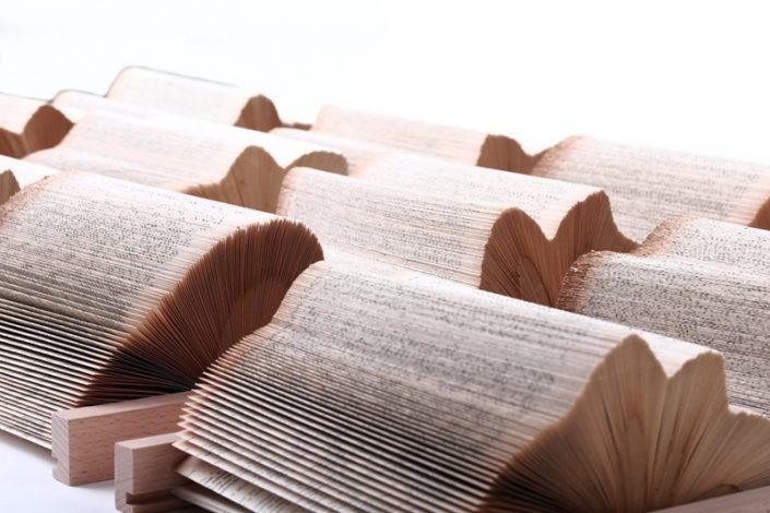 Papierowa rzeźba książka Crizu Rail