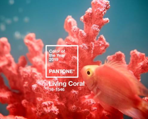 Kolor roku 2019 Pantone - Living Coral