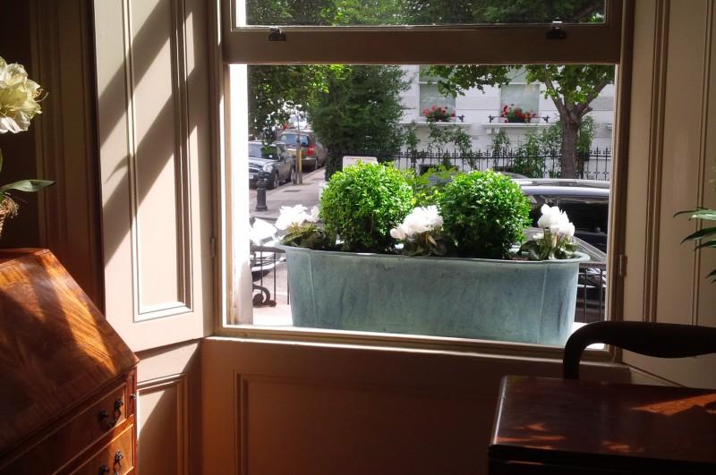 Donice parapetowe jak udekorować okno