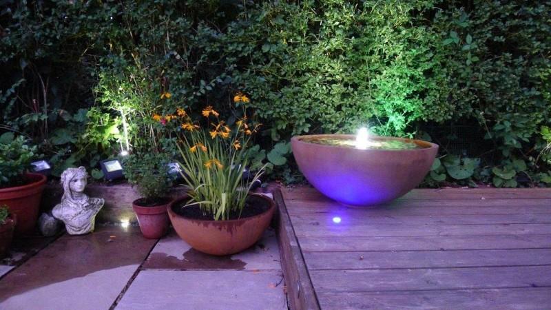 Misy wodne nowe trendy Capital Garden