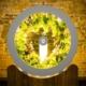 OGarden - domowy ogród